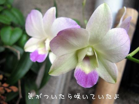 20120909-1.jpg