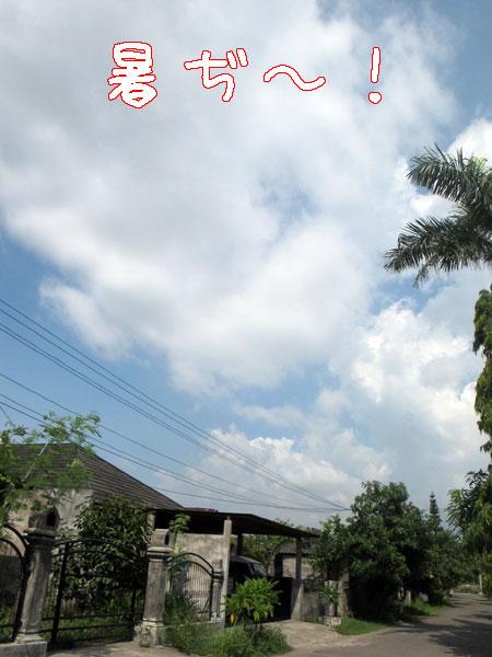 20121109-111.jpg