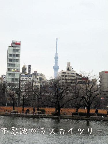 20110314-6.jpg