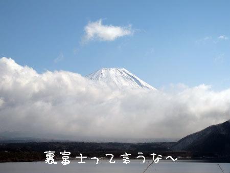 20110314-7.jpg