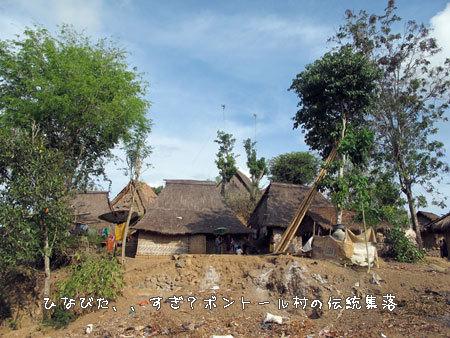 20111118-9.jpg