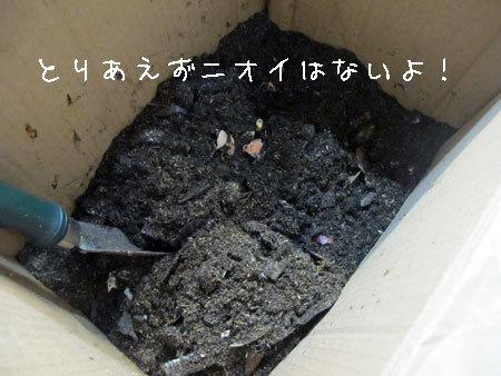 20111203-7.jpg