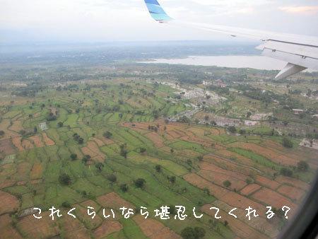 20120411-5.jpg