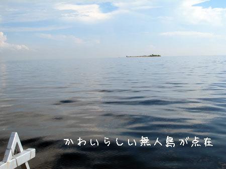 20120507-4.jpg