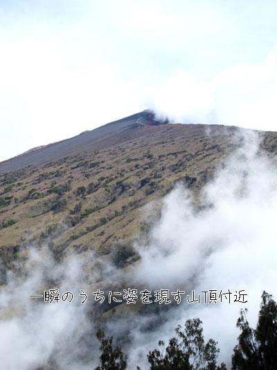 20101009-10.jpg