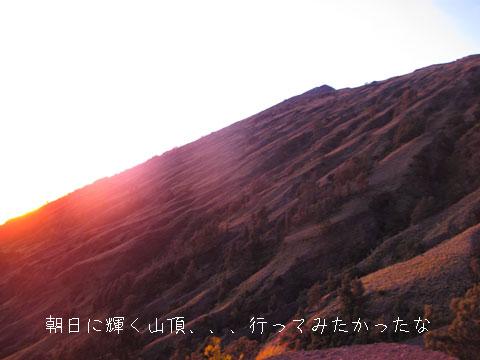20101010-4.jpg