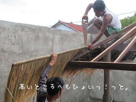 20110115-6.jpg