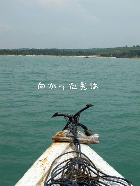 20110306-1.jpg