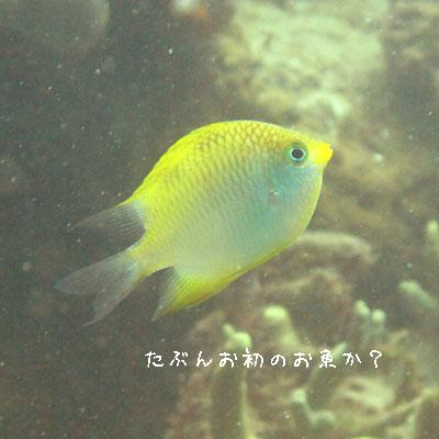 20110512-7.jpg