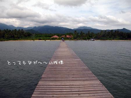 20110512-8.jpg