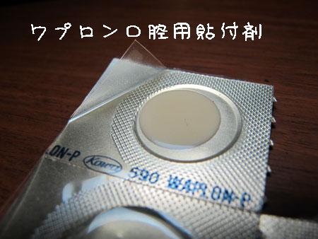 20120928-1.jpg
